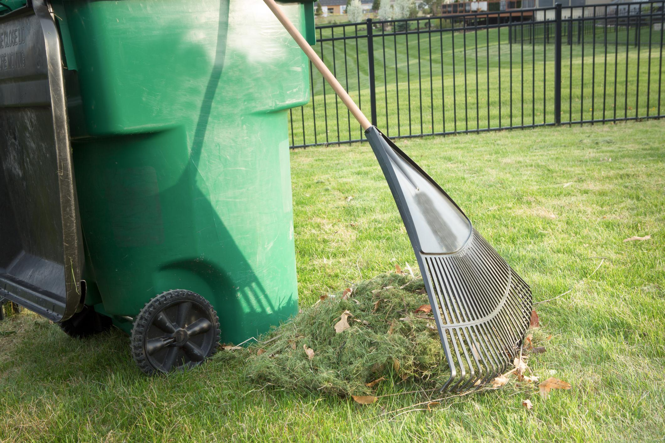 This is a picture of a yard clean up.