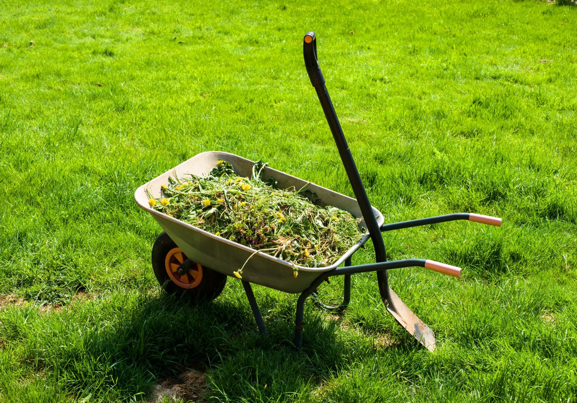This is a picture of a lawn maintenance.